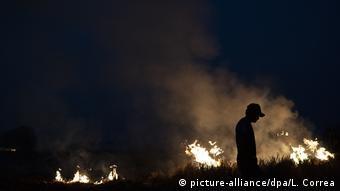Waldbrände am Amazonas BdTD (picture-alliance/dpa/L. Correa)