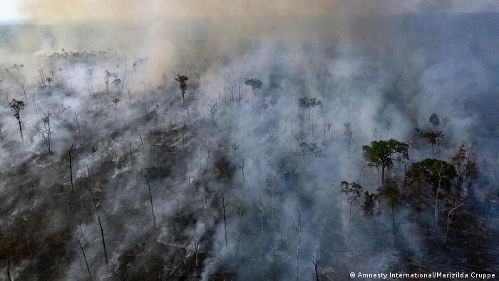 Incendio forestal en el estado de Mato Grosso (foto del 23 de agosto de 2019). (Amnesty International/Marizilda Cruppe)