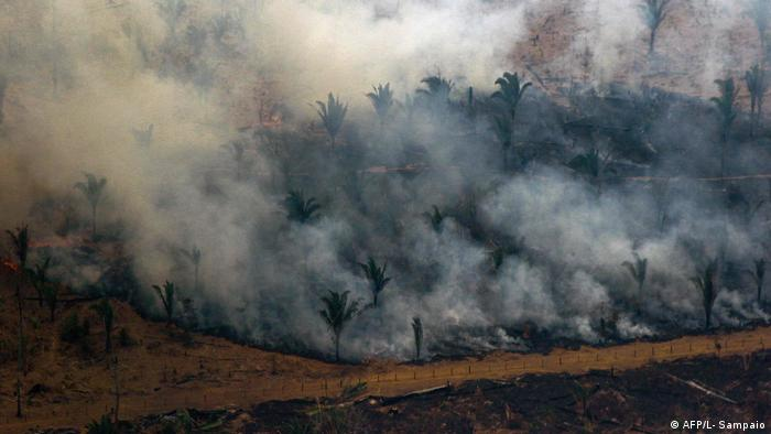 Smoke rises from the blazes in the Amazon wildfires