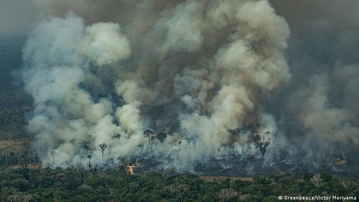Stoppt Brasiliens Armee die Riesen-Feuer?