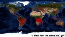 Screenshot Firms NASA Weltkarte der Brände