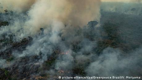 Floresta queimando, com muita fumaça