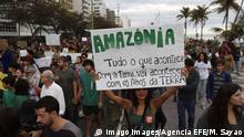 Brasilien Rio Protest gegen Ausbeutung des Amazonas-Regenwaldes