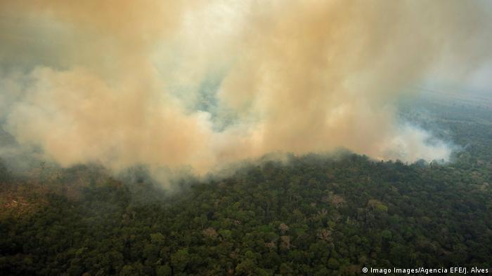 El humo espeso se extiende sobre gran parte del Amazonas. Desde el aire, se observa mejor la dramática y progresiva destrucción de la selva tropical.