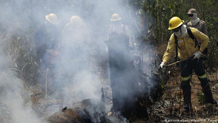 Troncos de árboles carbonizados que siguen ardiendo. Miles de bomberos exponen sus vidas intentando dominar las llamas.