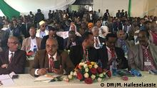 Äthiopien Konferenz constitutional and multi-ethinc federal system