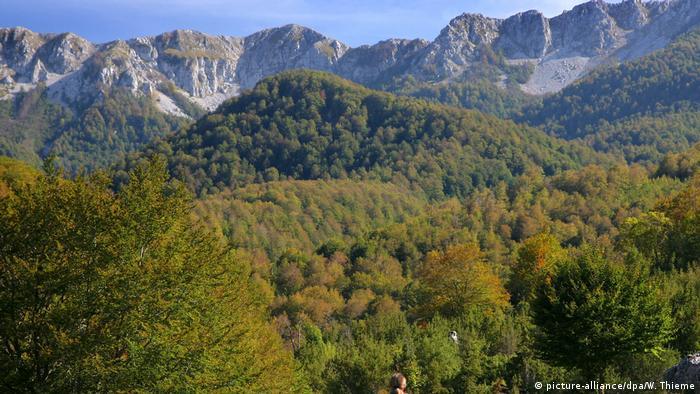 Parque Nacional de Abruzos, Lácio e Molise, na Itália