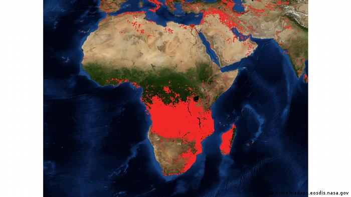 Screenshot Firms NASA Satelittenaufnahme Brände in Afrika
