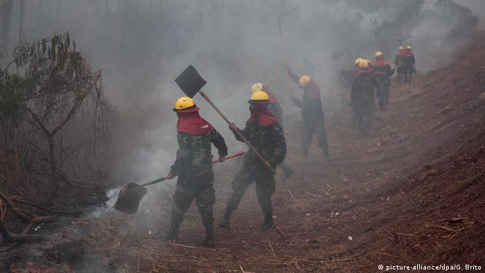 Bolivien Region Chiquitania Waldbrände (picture-alliance/dpa/G. Brito)