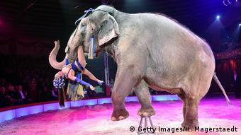 Jana Lacey-Krone performs with an elephant during Circus Krone