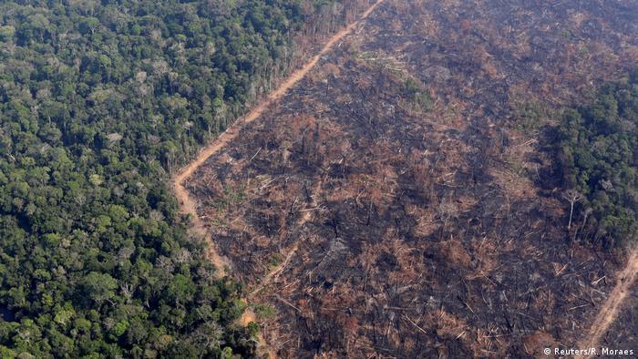 Foto de agosto mostra floresta desmatada na região de Porto Velho