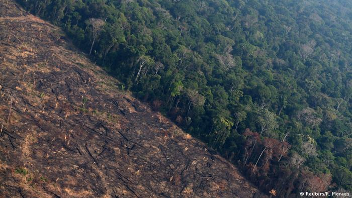 Deforested track of the Brazilian Amazon