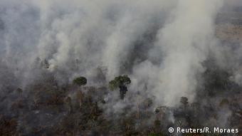 Brasilien Amazonas Waldbrände