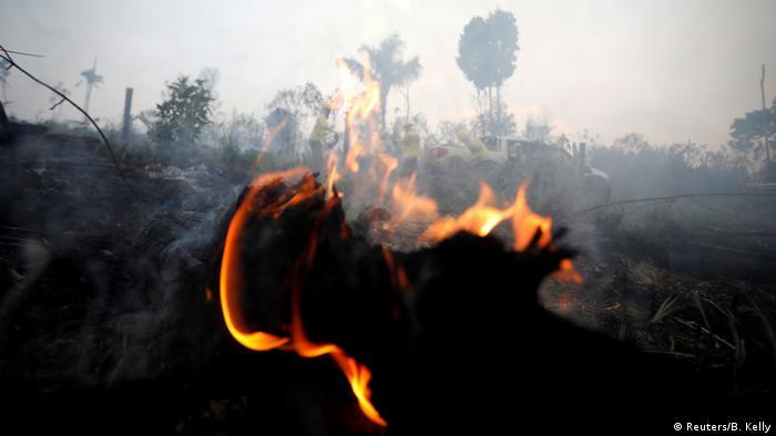 Brasilien Brennende Amazonas-Dschungel in Apui (Reuters/B. Kelly)