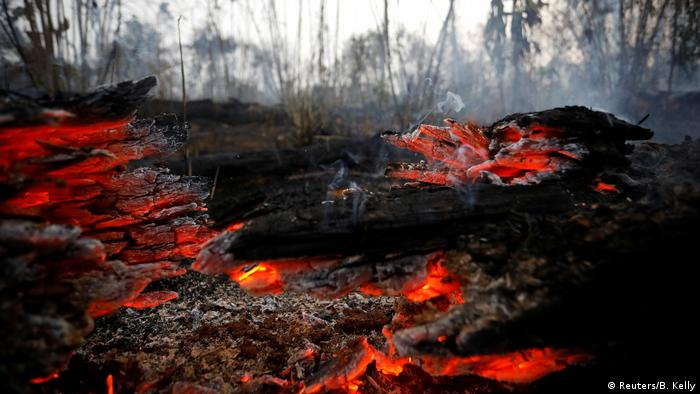 Brasilien Brennende Amazonas-Dschungel in Apui