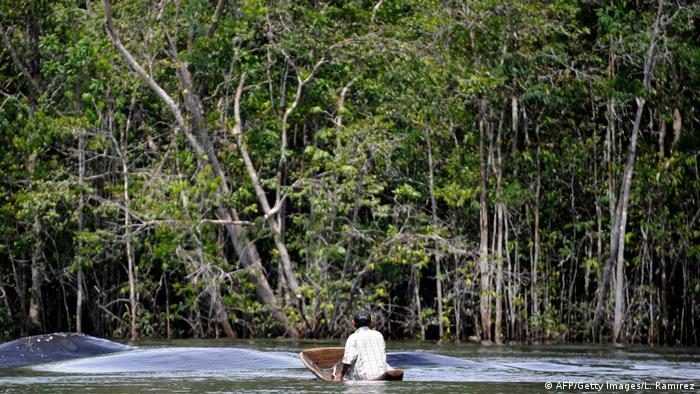 Indígena piaróa en el río Orinoco, frontera amazónica entre Venezuela y Colombia.