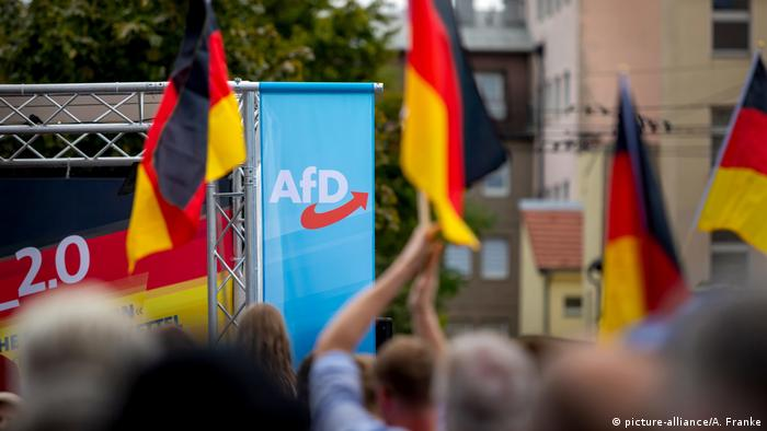 The symbol of the German rightist party AfD flanked by German flags