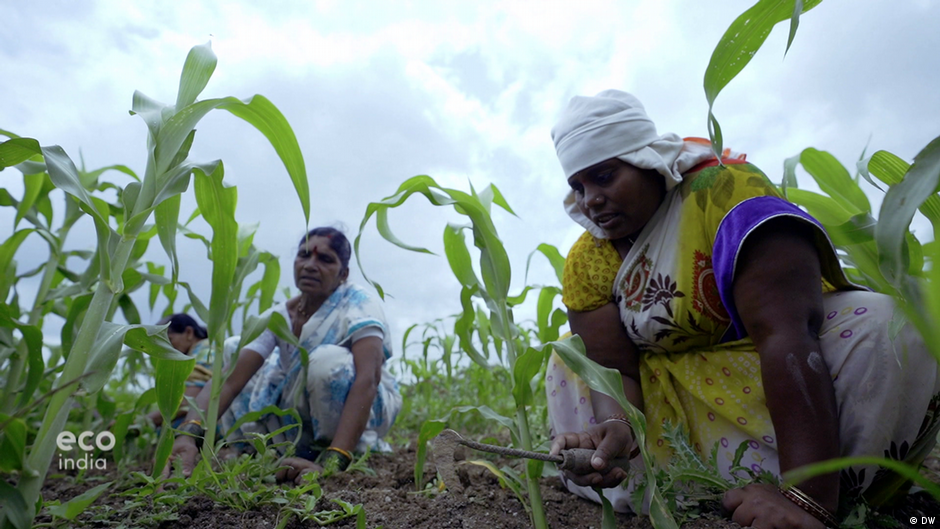 Land ownership rights for India's women
