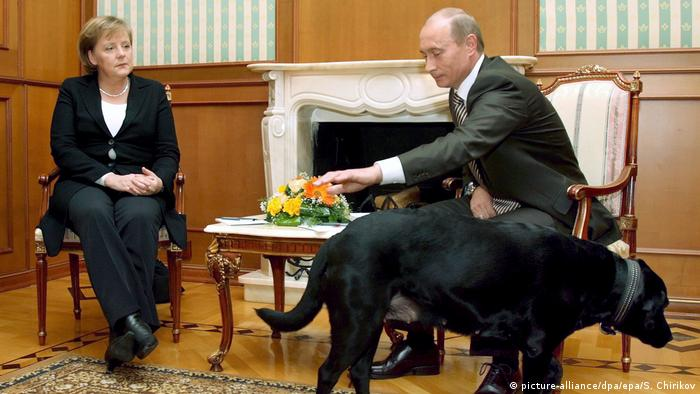 German Chancellor Angela Merkel and Russian President Vladimir Putin and dog during a meeting (picture-alliance/dpa/epa/S. Chirikov)