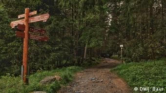 Trail wayfinder in Harz National Park (DW/J. Baur)
