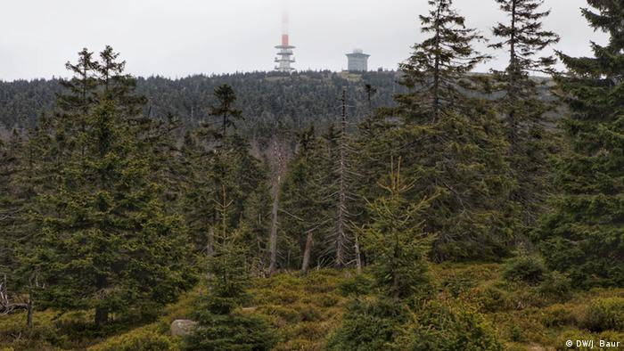 The Jenissej and Urian radio towers as seen from Torfhaus, through the fog and on top of the Brocken (DW/J. Baur)