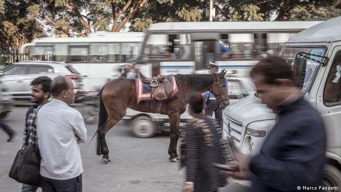 A horse and people stand amidst traffic on a busy road