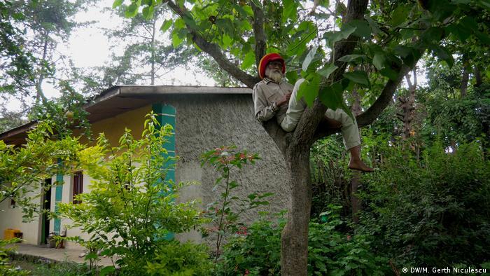 Ras Kawintesseb on a tree in Ethiopia