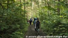 Indonesien Wandern Wald