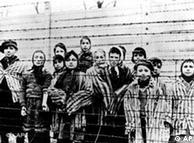اردوگاه آشویتس در روزی که به دست ارتش شوروی افتاد