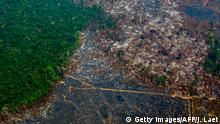 Aerial view of deforestation in Nascentes da Serra do Cachimbo Biological Reserve in Altamira, Brazil (Getty Images/AFP/J. Laet)