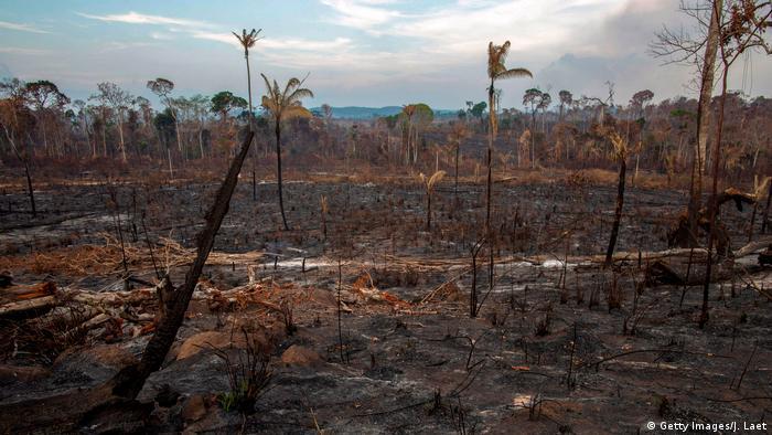 Área desmatada com queimada em Novo Progresso, no estado do Pará