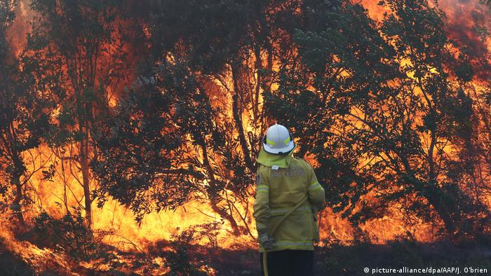 A firefighter stands in front of a raging blaze