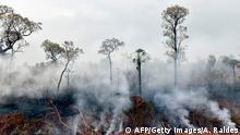 Bolivien - Waldbrand