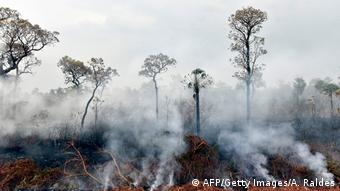 forest fires in Bolivia