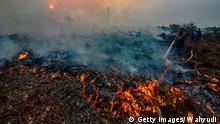 Indonesien und Malaysien - Waldbrand Aussprache lernen Indonesien und Malaysien - Waldbrand