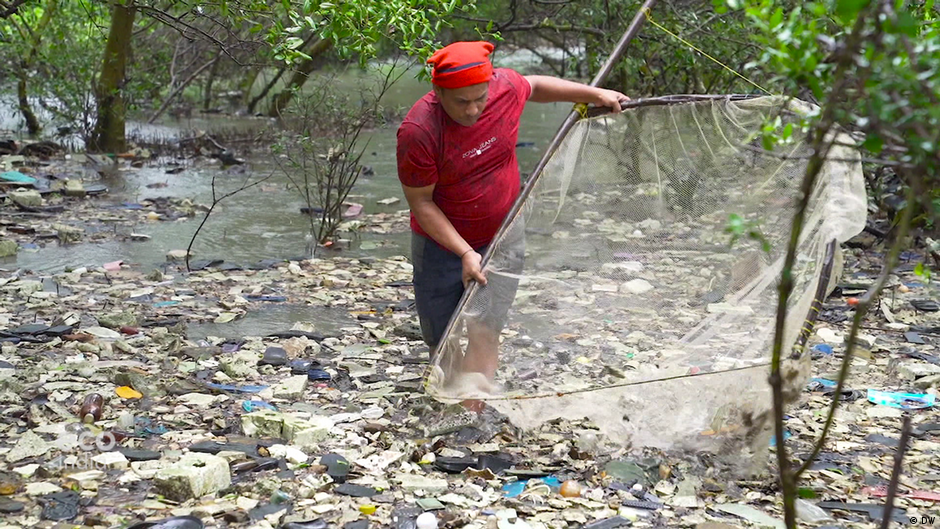 Fishermen rescue mangrove forests