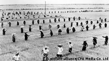01 - 60 Jahre China im Umbruch | Der Sprung ins Verderben | Landwirtschaft (picture-alliance/CPA Media Co. Ltd)