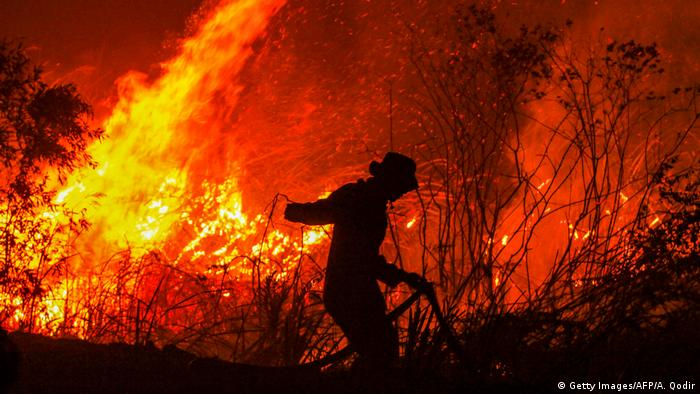 Person silhoueted in South Sumatra blaze, Indonesia