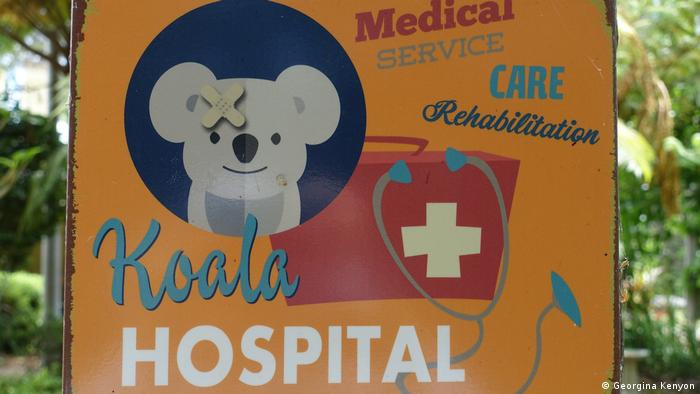 A sign for the Koala Hospital in Port Macquarie