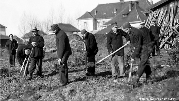 Pacjenci szpitala podczas pracy. Listopad 1931