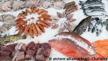 14.08.2019, Hamburg: Frischer Fisch und andere Meeresfrüchte liegen auf einem Verkaufstisch im Fischmarkt Hamburg Altona. Foto: Christian Charisius/dpa   Verwendung weltweit