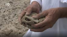 Filmstill DW-Video: Kampf gegen Wüstenbildung in Indien
