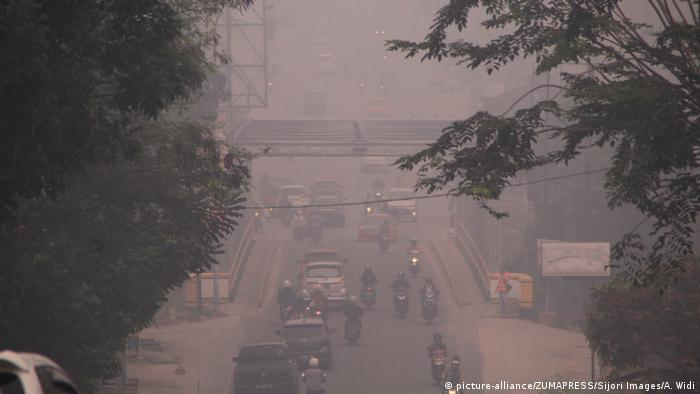 Pekanbaru in South Sumatra is covered with haze from the smoke caused by forest and land fires