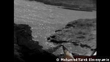Mohamed Tarek Elmenyawie Landscape for (Ras Muhammad)