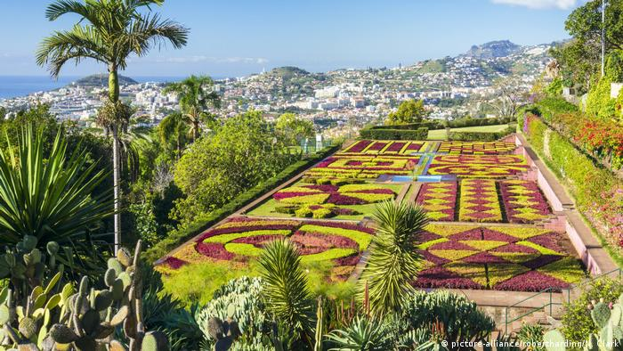 Portugal Botanical garden in Funchal, Madeira (picture-alliance/robertharding/N. Clark)