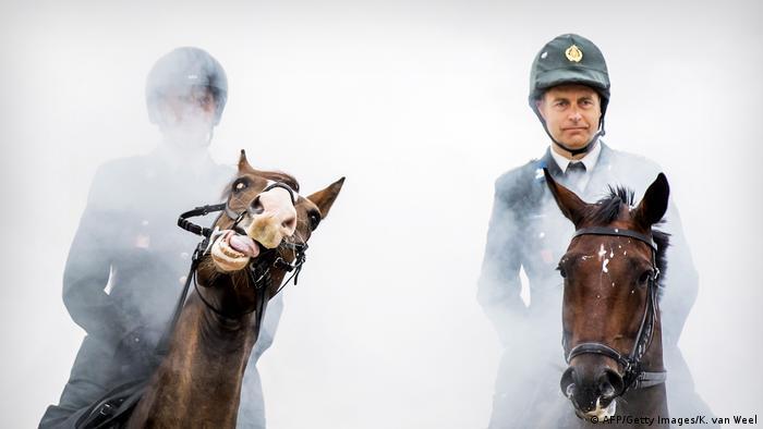 Ovom konju, pripadniku počasne straže, očigledno nije jasna ozbiljnost situacije: ponaša se nepristojno na Dan prinčeva (Prinsjesdag), dan kada se tradicionalno otvara holandski parlament, a kralj u zlatnim kočijama prolazi ulicama.
