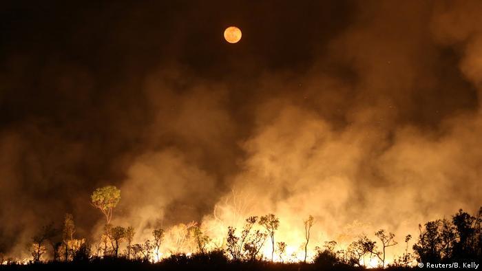 Incendios forestales en la Amazonía.