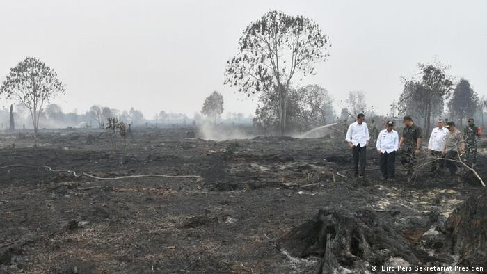 Indonesien | Präsident Joko Widodo | Waldbrände in Riau ( Biro Pers Sekretariat Presiden)