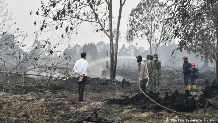 Indonesian President Joko Widodo visits Riau, where forest fires have ravaged vast areas