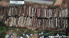 Drone footage of piles of logs illegally cut from the Amazon (Reuters/N. Doce)